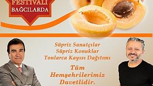 İstanbullular kayısıya doyacak